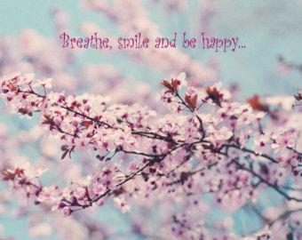 Spring Cherry Blossom Quotes Quotesgram
