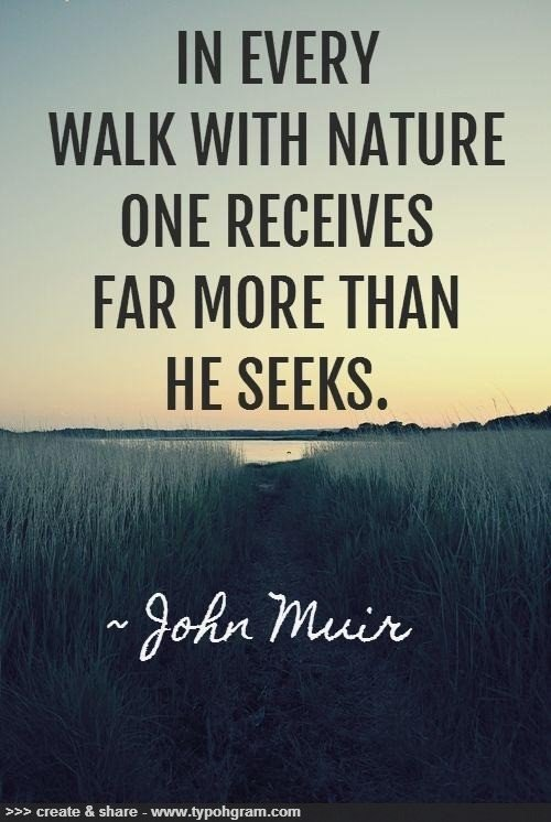 positive quotes about nature  quotesgram