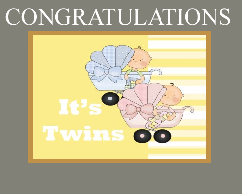 Twin Baby Quotes Quotesgram