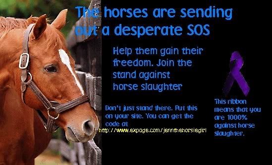 Against Horse Slaughter Quotes