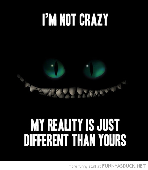 Nice Quotes On Reality: Cat Reality Quotes. QuotesGram