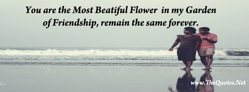 Friendship Quotes For Facebook. QuotesGram