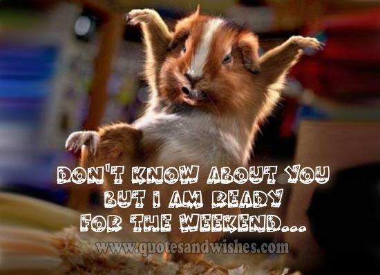 Funny Weekend Quotes Happy. QuotesGram