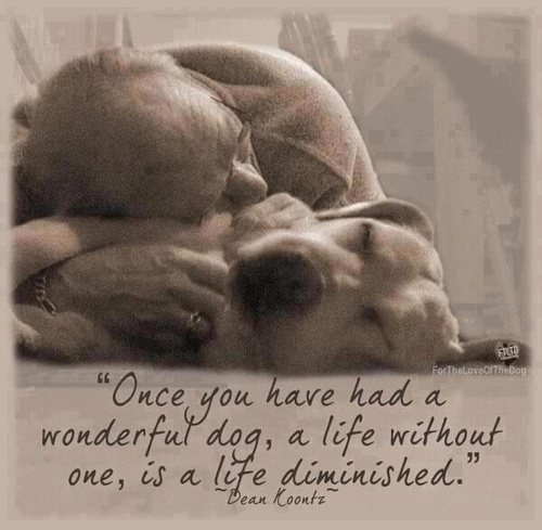Birthday Quotes For Dog Lovers. QuotesGram