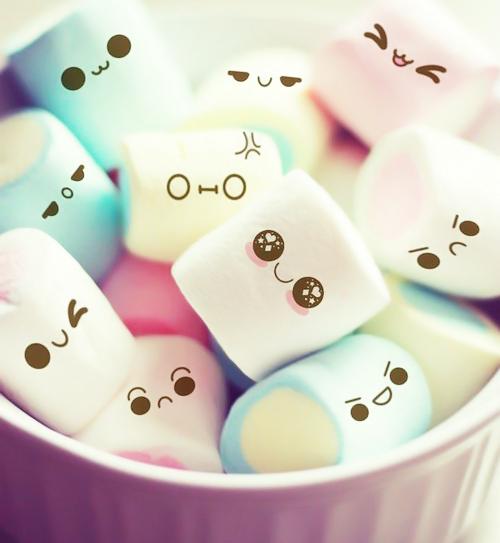 Cute Food Quotes Tumblr