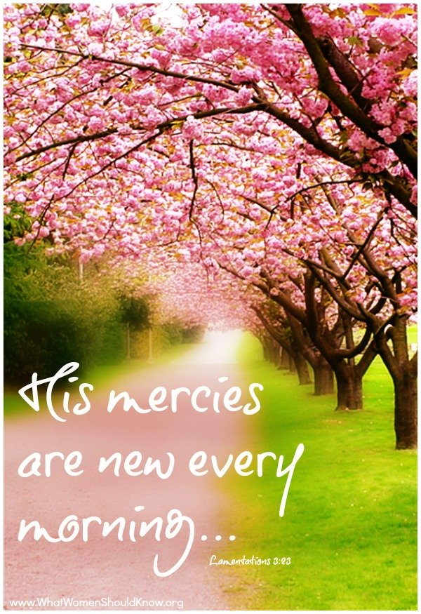 Traveling Mercies Quotes Quotesgram. Love Quotes For Him Every Morning. Family Quotes Example. God Quotes Positive Thinking. Frankenstein Quotes Nature Vs Nurture. Positive Quotes Spanish. Life Quotes N Images. Travel Quotes Cool. Inspirational Quotes Motivational Quotes