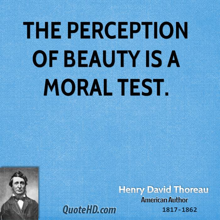 perception of beauty in the eyes Transcript of tok presentation: perception of beauty tok presentation yarhiel santa, alexis price, and kelcey howley real-life situation conclusion face transformation  now, abstract is more eye pleasing art these new perceptions of beauty are very influential in the united states.
