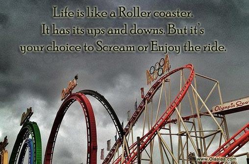 Funny Roller Coaster Quotes. QuotesGram