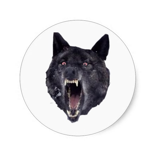 insanity wolf quotes awesome quotesgram