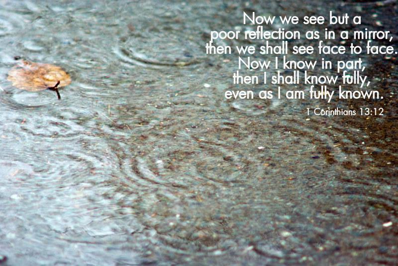 Blessed Rainy Day Quotes: Happy Rainy Friday Quotes. QuotesGram