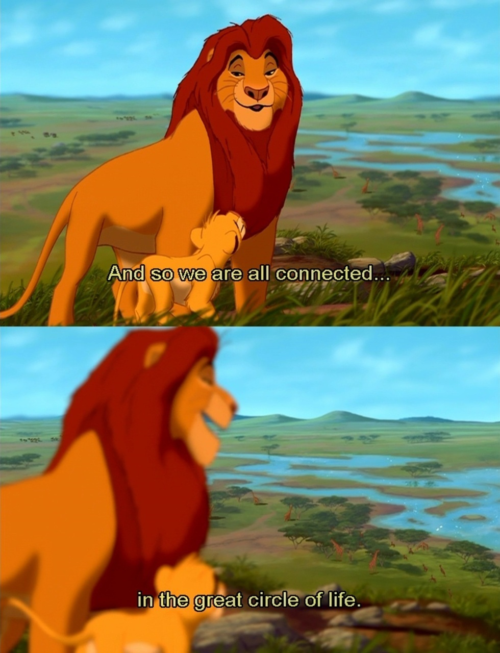 Simba Lion King Movie Quotes Quotesgram