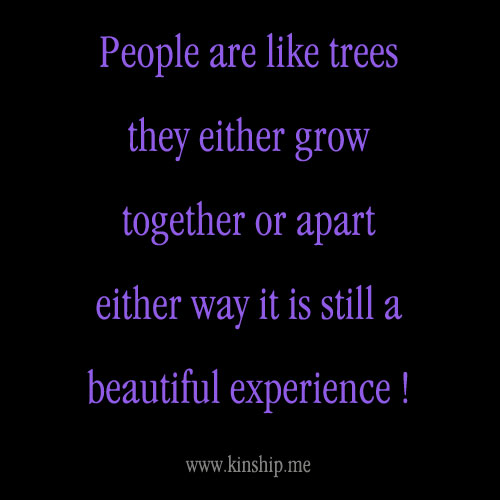 Growing Apart Quotes