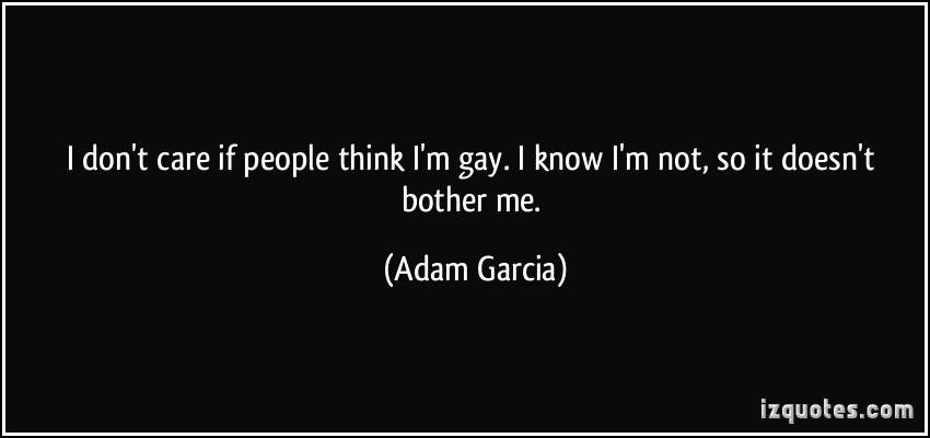 gay lesbian adoptions