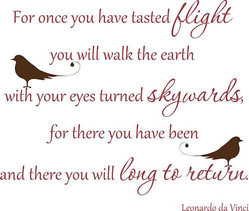 Leonardo Da Vinci Quotes Flying Quotesgram