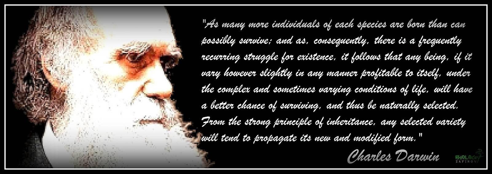 Quotes About Evolution. QuotesGram