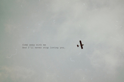 quotes about love and flying quotesgram