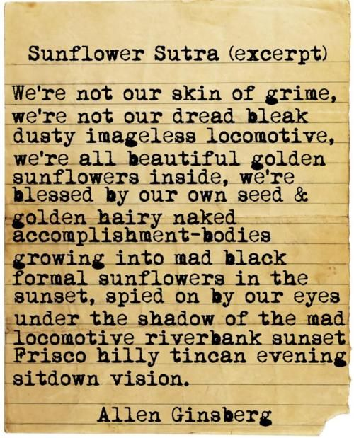 allen ginsberg sunflower sutra Allen ginsberg lived in berkeley from september 1955 until august 1956 i have written about his time here, but, until labor day weekend, i had not seen photographs.