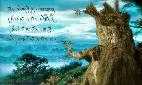 treebeard quotes quotesgram