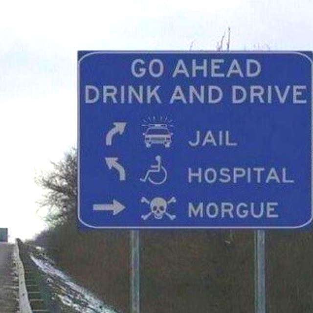 Drunk Quotes Funny Animal Quotesgram: Drinking And Driving Funny Quotes. QuotesGram