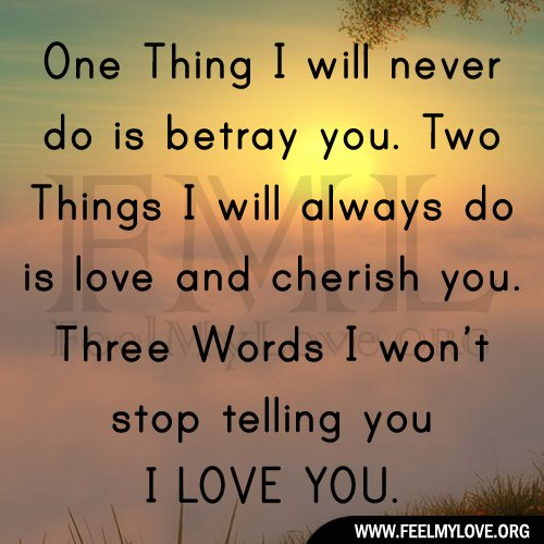 One Thing Is Certain Quotes: I Will Never Stop Loving You Quotes. QuotesGram