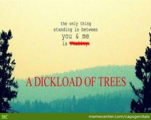 Funny Meme Inspirational : Memes inspirational quotes quotesgram