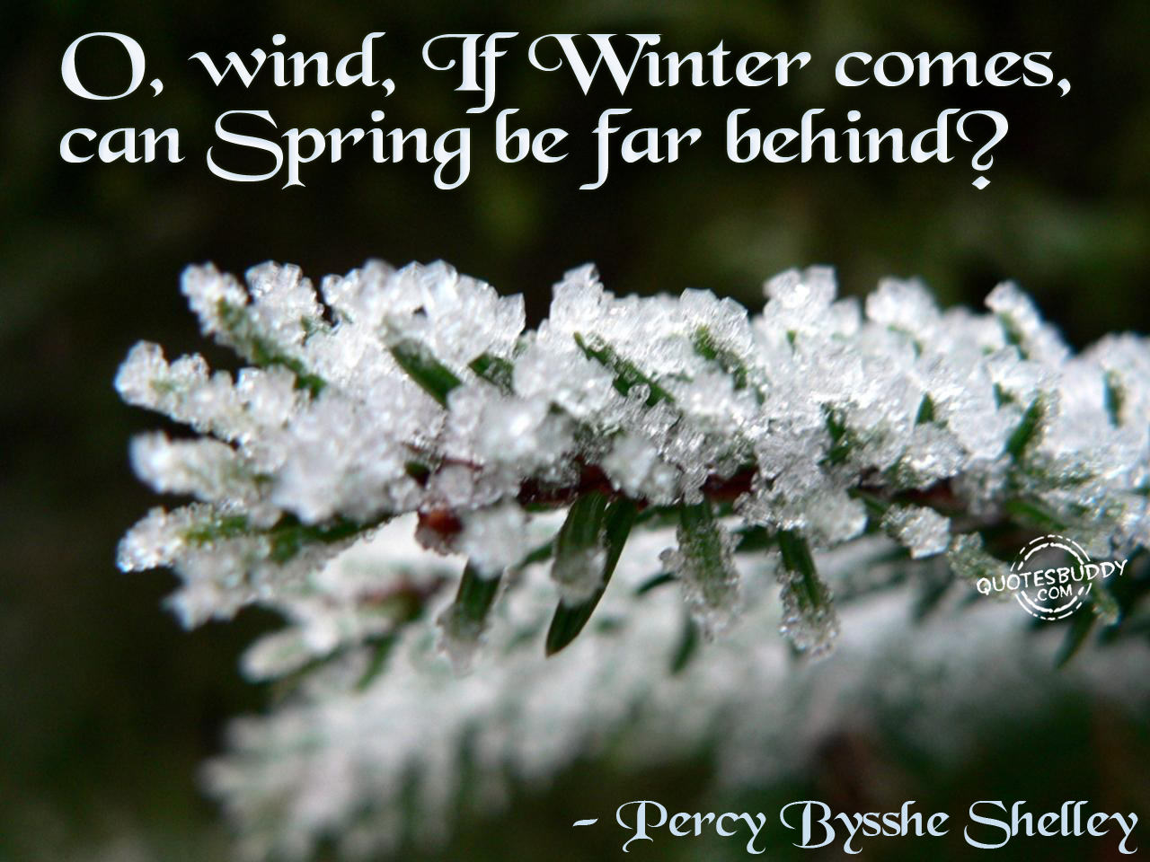 Winter Love Quotes And Sayings. QuotesGram