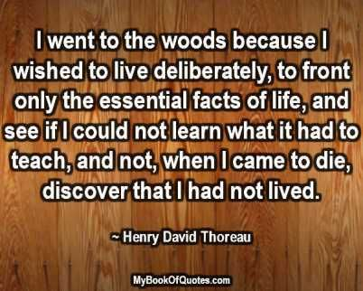 transcendentalism according to ralph emerson david thoreau and emily dickinson Ralph waldo emerson and emily dickinson were two of america's most intriguing poets  according to emerson,  henry david thoreau the thoreau quote that i chose.