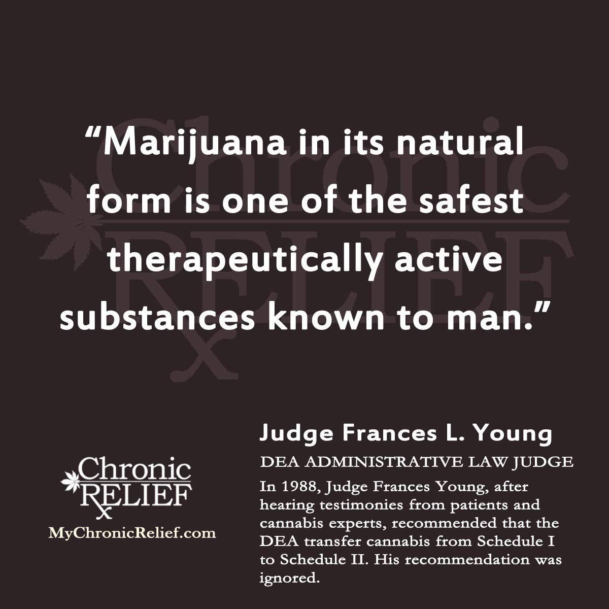 Activism Quotes: Quotes About Cannabis Activism. QuotesGram