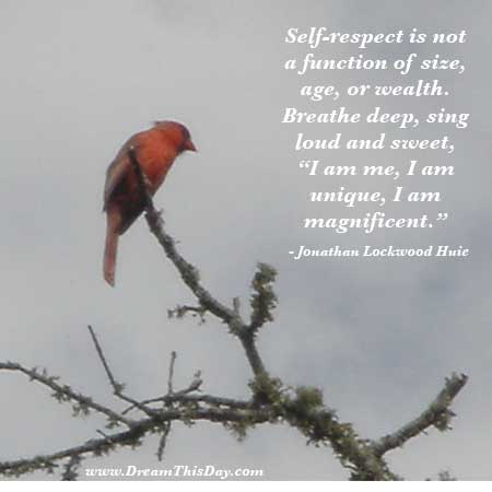 Self Respect Quotes And Sayings Quotesgram