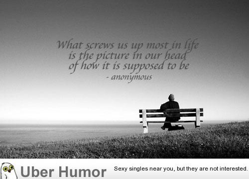 Wednesday Quotes Inspirational Humor: Wednesday Quotes That Are Funny. QuotesGram