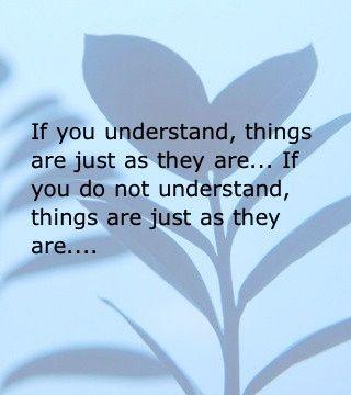 zen quotes on balance - photo #28
