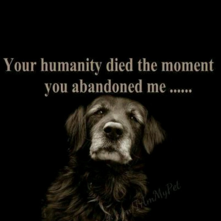 Miss U Quote For Him: You Abandoned Me Quotes. QuotesGram