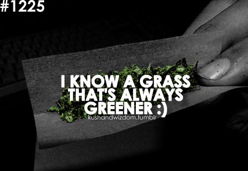 Weed Wallpaper Quotes Smoking Marijuana Quot...