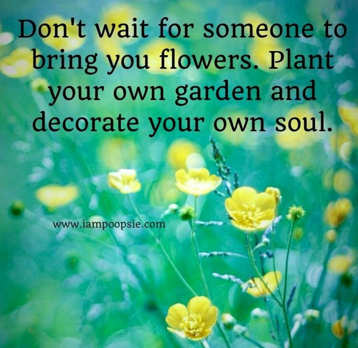 Quotes About Bouquets Of Flowers: Flower Quotes Pinterest. QuotesGram