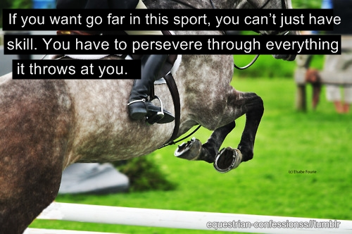 Funny Horse Jumping Quotes. QuotesGram
