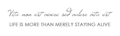 Good Latin Quotes. QuotesGram