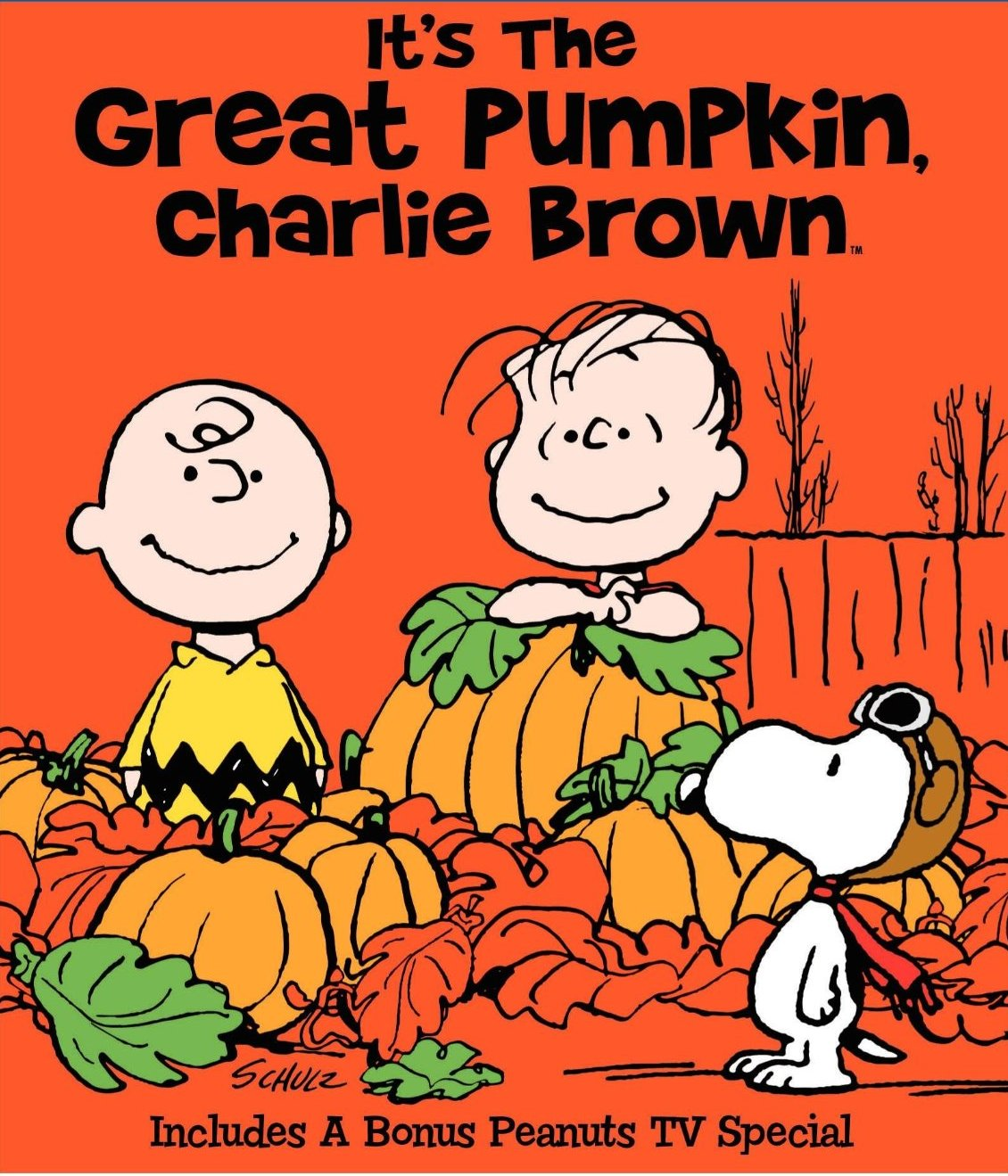 Charlie Brown Quotes About Life: Funny Quotes Charlie Brown. QuotesGram