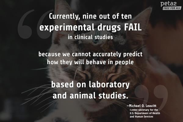 expert on animal testing quotes quotesgram