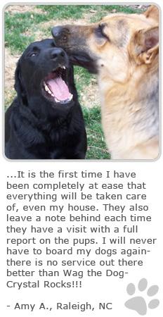 Pet Remembrance Quotes