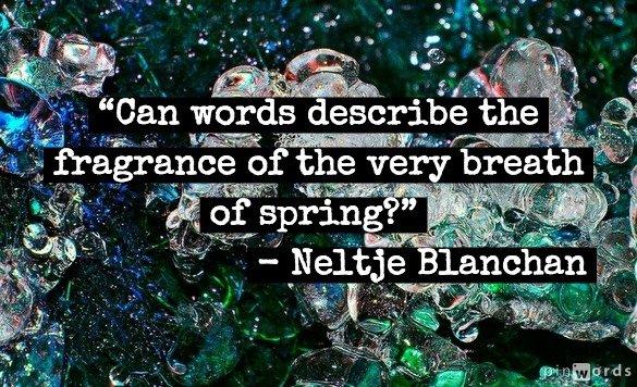 spring equinox quotes quotesgram