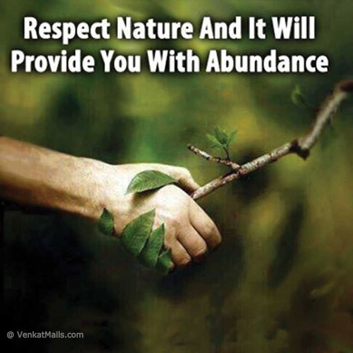 Protect Nature Quotes: Quotes About Respecting Nature. QuotesGram