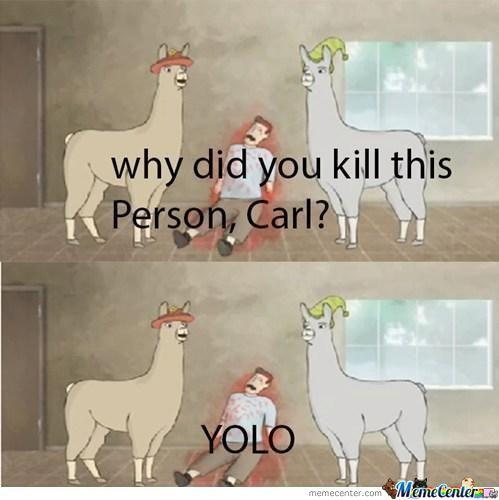 Llamas Quotes Inspirational: Carl The Llama Friendship Quotes. QuotesGram