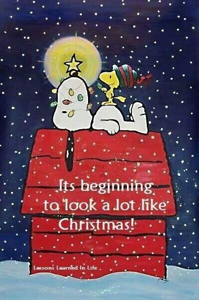 Peanuts Christmas Quotes. QuotesGram