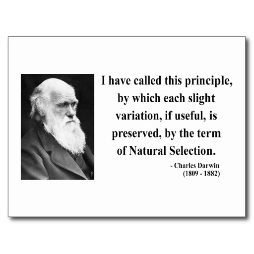 Darwin Quotes: Charles Darwin Quotes On Religion. QuotesGram