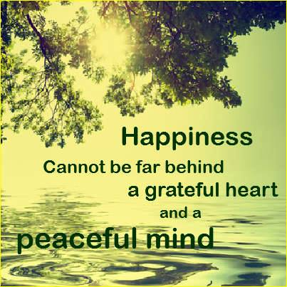 Quotes About Happiness And Bliss. QuotesGram