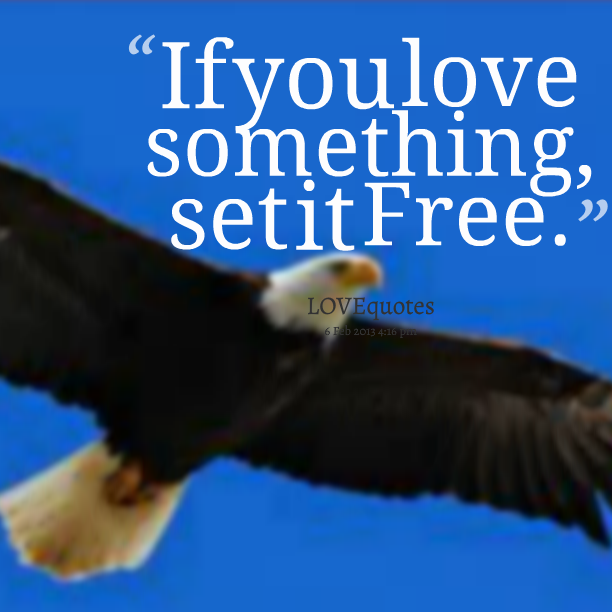 Funny Quotes If You Love Something Set It Free : 1688061138-9334-if-you-love-something-set-it-free.png