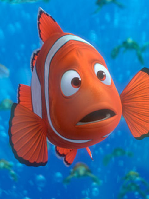 changes in marlin in finding nemo essay