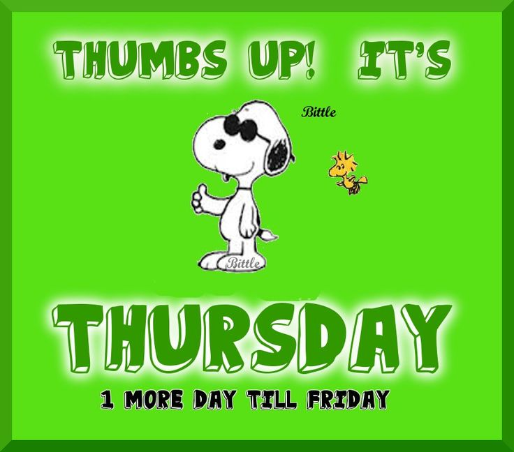 Happy Thursday Quotes with Photos | Words of Wisdom ... |Thursday Quotes Funny
