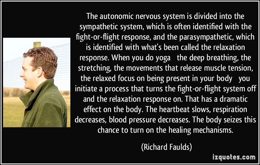 describe the fight or flight system Doctors call the body's reaction to stress as general adaptation syndrome or gas  this is called fight or flight response  an immune-system messenger.
