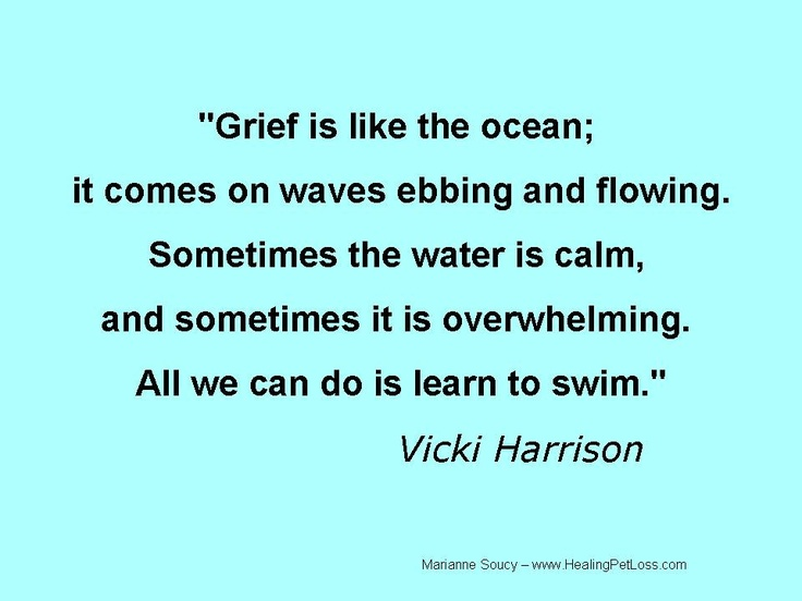 Sayings About Sorrow: Grief Quotes Funny. QuotesGram